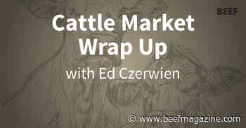 Cattle Market Wrap-up: Prices slip lower