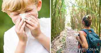 ADVERTORIAL: New eco-friendly way of keeping kids Covid safe is huge hit with parents