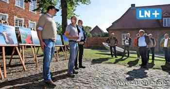 Ratzeburg: Bauern protestieren gegen Kunstaktion - Lübecker Nachrichten