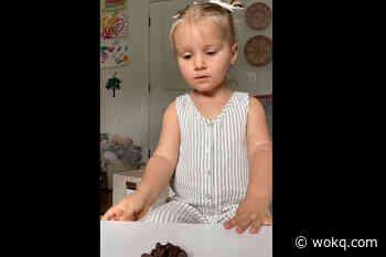 WATCH: Tyler Hubbards Little Girl Takes Toddler Challenge - wokq.com