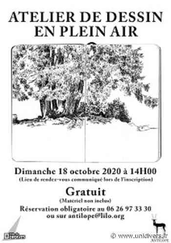 Atelier de dessin en plein air dordives dimanche 18 octobre 2020 - Unidivers