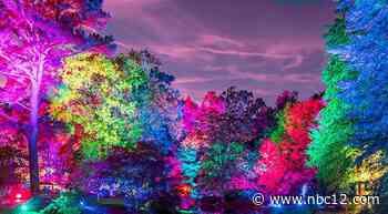 Garden Glow to illuminate historic Maymont estate - WWBT NBC12 News