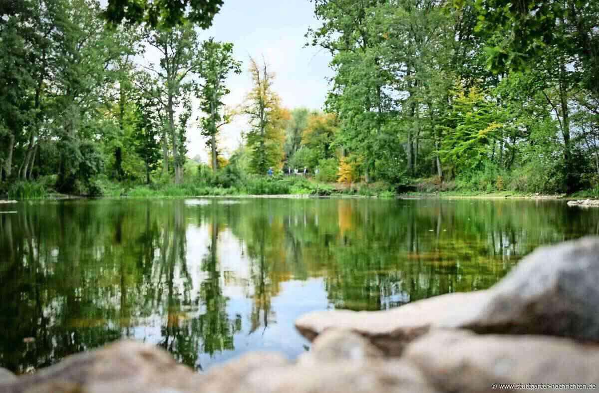 Ein Tümpel in Ehningen bei Böblingen wird zum Vorzeige Biotop - Idylle als Ausgleich für die Industrie - Stuttgarter Nachrichten
