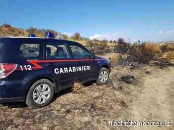 Incendio nella riserva naturale di Ciminna, arrestato piromane: è un forestale - filodirettomonreale.it