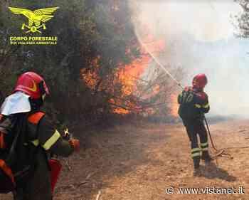 Incendi: bruciano alcuni pascoli a Ittiri | Cagliari - vistanet