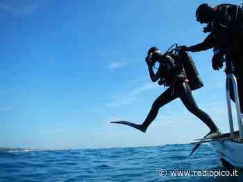 Una giornata di pulizia per il lungolago di Bardolino - Radio Pico
