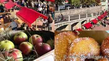 Pomo Pero mostra mercato di antiche varietà: specialità frittelle e succo di mela - VicenzaToday