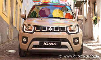 Suzuki Ignis Facelift (2020): Hybrid & Comfort+   autozeitung.de - Autozeitung