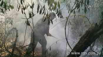 Logran controlar incendio en el Parque Nacional de Ybycuí - Resumen de Noticias