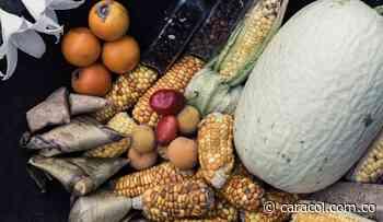 En Gachancipá, homenaje a la gastronomía chibcha - Caracol Radio