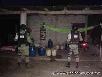 La Guardia Nacional asegura en la Cruz de Elota un laboratorio clandestino de drogas. - Sinaloahoy