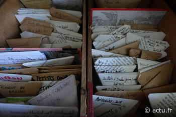 A Dampmart, les habitants échangent des graines à la grainothèque - actu.fr