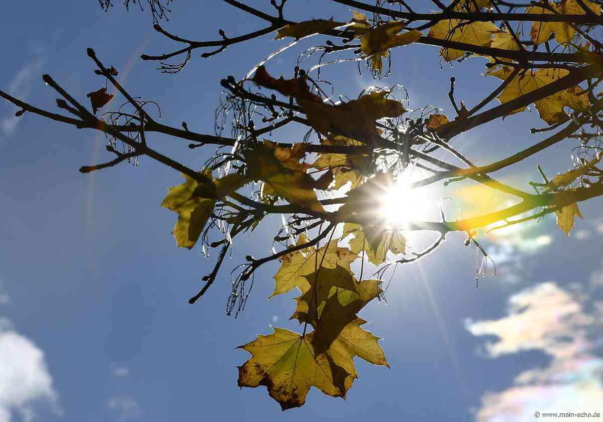 """""""Herbstklänge"""" auf der Hardt in Obernburg-Eisenbach am 3. und 4. Oktober - Main-Echo"""