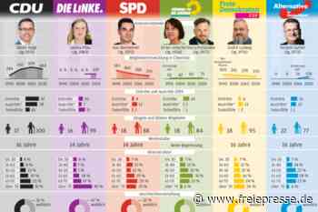 Parteien im Vogtland verlieren Mitglieder - Freie Presse