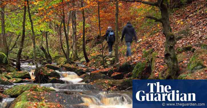10 of the best autumn woodland walks: readers' travel tips