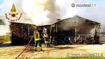 Incendio di una legnaia ad Azzano Decimo, località Fagnigola - Nordest24.it