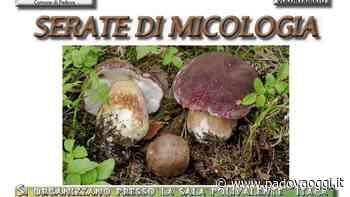 """""""Serate di micologia 2020"""": incontri alla sala polivalente """"Itaca"""" di via Santa Maria Assunta a Padova - PadovaOggi"""