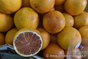 Come profumare la casa con le scorze e le bucce di arancia in pochi minuti - Proiezioni di Borsa