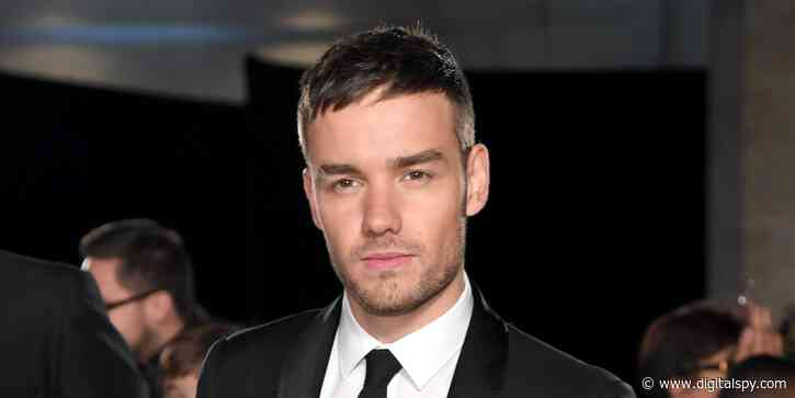 Liam Payne shows Harry Potter star his Hagrid-themed garden - digitalspy.com