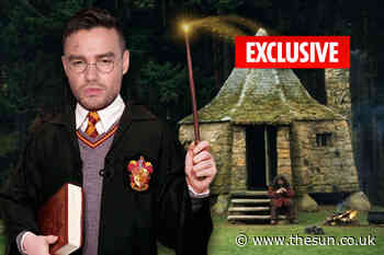 Harry Potter superfan Liam Payne magics up replica of Hagrid's hut in his back garden - The Sun