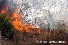 Incendio forestal arrasó con todo en Villa Caro, Norte de Santander - La FM