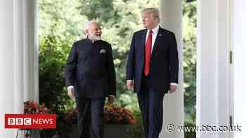 Kamala, Kashmir and Modi's friend all on ballot in US election