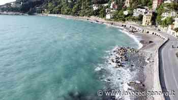 Santa Margherita Ligure: progetto a difesa della provinciale 227 per Paraggi e Portofino - LaVoceDiGenova.it