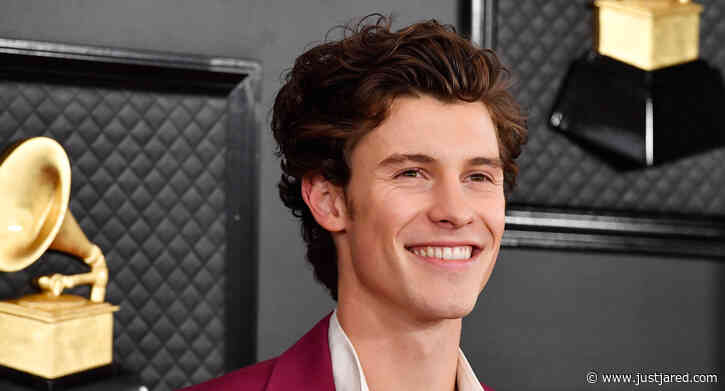 Shawn Mendes Has Seemingly Confirmed a Collab with This Singer!