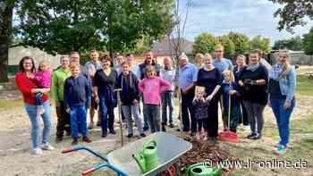 Arbeitseinsatz in Elsterwerda: Einwohner bringen Spielplatz auf Vordermann - Lausitzer Rundschau