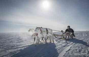 Arctic Skills competition presentation due at forum in Salekhard - TASS
