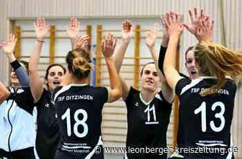Volleyball in Ditzingen: TSF: Breit aufgestellt - Leonberger Kreiszeitung