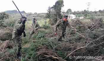 Así fue la jornada ambiental de recuperación en Saboyá, Boyacá - HSB Noticias