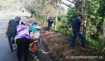 Con arborización construyen túnel verde en la vía de ingreso a Nátaga - lavozdelaregion.co