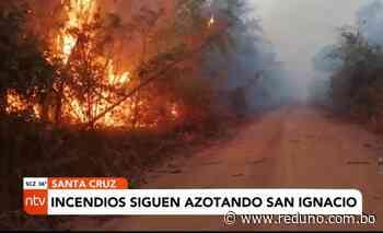 Incendios siguen azotando San Ignacio de Velasco - Red Uno de Bolivia
