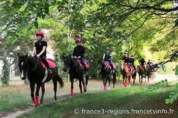"""À Gouvieux dans l'Oise, l'école des courses hippiques ouvre une classe de 3ème """"option"""" cheval - Franceinfo"""