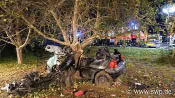 Tödlicher Unfall B28 zwischen Weinstadt und Remshalden: Auto kracht gegen Baum: Eine Tote und ein Schwerverletzter - SWP