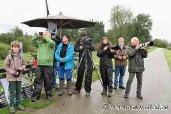 """Natuurpunt over Scheldeoevers: """"Hoogbouwkantoren en mega-win... (Hoboken) - Het Nieuwsblad"""