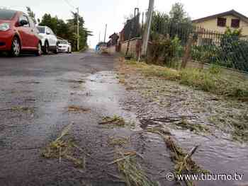 TOR LUPARA - Perdita d'acqua da mesi in via Monte San Biagio - Tiburno.tv - Tiburno.tv
