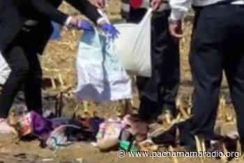 Yunguyo: encuentran cuerpo de octogenaria en estado de descomposición - Pachamama radio 850 AM