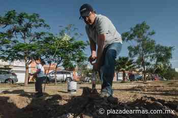 Privilegia San Juan medio ambiente - Plaza De Armas