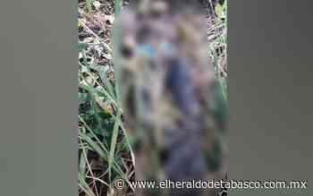 Hallan cuerpo atado de pies y manos en Huimanguillo - El Heraldo de Tabasco