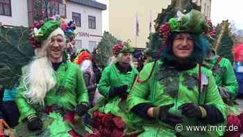Faschingsumzug in Neustadt an der Orla wegen Corona abgesagt - MDR