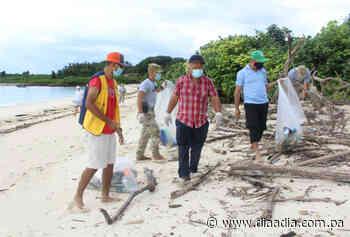 Recolectan gran cantidad de desechos de playas en Pedasí - Día a día