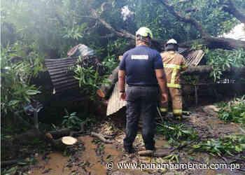 Inundaciones tras fuertes lluvias afectan cuatro casas en La Corocita de Tonosí - Panamá América