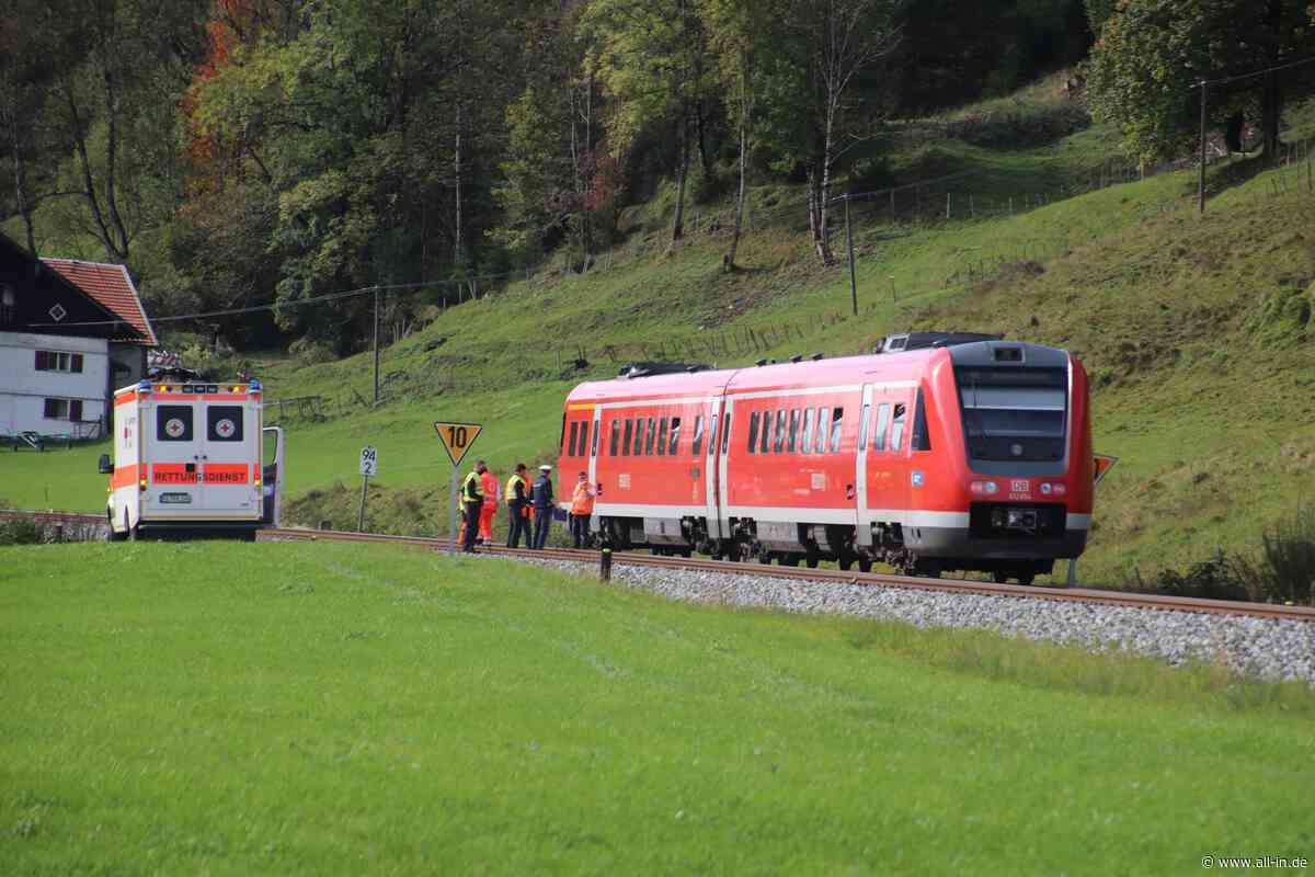 Tragischer Unfall: Radfahrerin (74) bei Oberstaufen von Zug erfasst: Tödlich verletzt - Oberstaufen - all-in.de - Das Allgäu Online!