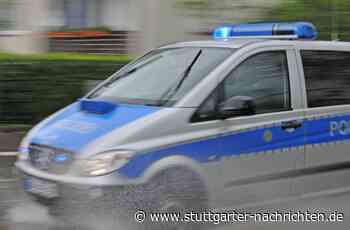 A81 bei Ilsfeld - Freilaufender Hund sorgt für Aufregung - Stuttgarter Nachrichten