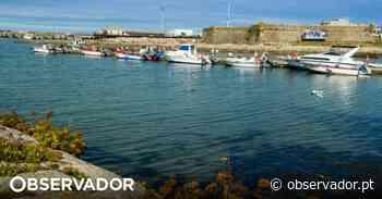 PSD questiona Governo sobre dragagem do porto de Vila Praia de Âncora, em Caminha - Observador