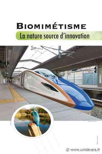 Le biomimétisme : la nature, source d'innovation Médiathèque samedi 3 octobre 2020 - Unidivers