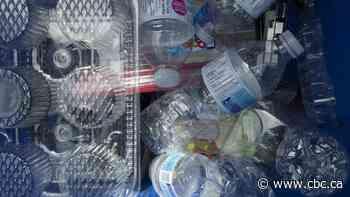 Unilateral ban on single-use plastics ignores spirit of new NAFTA, some critics, experts say