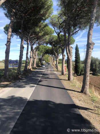 VIA NOMENTANA - Arriva l'asfalto anche tra Tor Lupara e il Raccordo - Tiburno.tv Tiburno.tv - Tiburno.tv